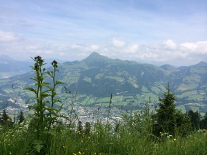 Ausblick Tirol